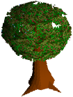 MagictreeRSC