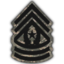 MW3 Command Sergeant Major Emblem.png