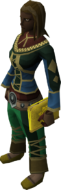 Mages' book (yellow) equipped