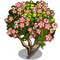 Giant Crown Flower Tree-icon
