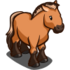 Przwalski Horse-icon