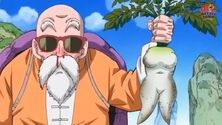 Roshi Rbanos