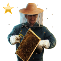 Huge item beekeeper gold 01