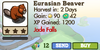 Eurasian Beaver Market Info (June 2012)
