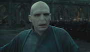 Voldemort realising Harry isn&#39;t dead