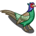 Green Pheasant-icon