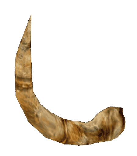 how to draw a minotaur horn