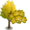 Ginkgo Maple Tree-icon
