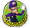 MK3DS Waluigi icon