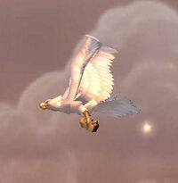 GreatWhitePlainshawk