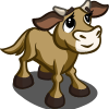 Yanbian Calf-icon