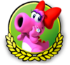 MK3DS Birdo icon