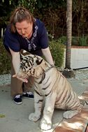 Houck with tiger
