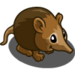 Elephant Shrew-icon