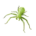 Item greencrabspider 01