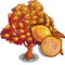 Giant Pink Lemon Tree-icon