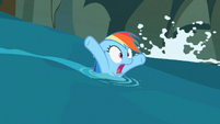 Rainbow Dash panicking S02E08