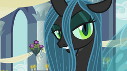 Queen Chrysalis ID