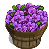 Purple Orchid Bushel-icon