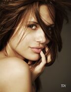 Torreydevitto885