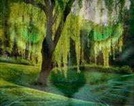 WillowClan.jpg