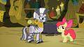 Apple Bloom flatters Zecora 1 S02E06.png