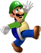 ShellLuigi