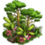 Rainforest Event-icon