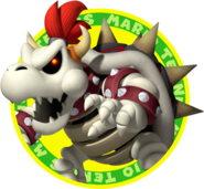 MTO Dry Bowser Icon