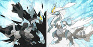 Black &amp; White Kyurem