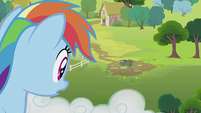 Rainbow Dash looking at the well S2E08