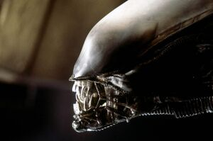 The Alien close-up