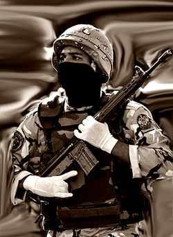 PLR Soldier Avatar 3