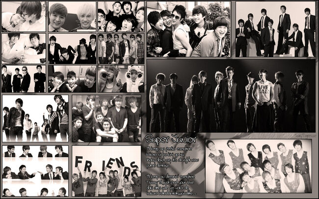 Super junior wallpapeer