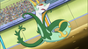 Trip Serperior