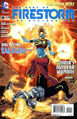 Fury of Firestorm Vol 1 10