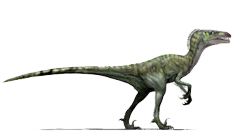 Dromaeosaurus  DROW-may-OH-saw-RUS Meaning Running Lizard  was a    Jurassic Fight Club Dromaeosaurus