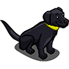 Black Lab II-icon