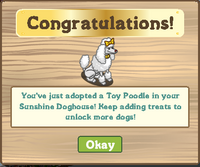 Sunshine Doghouse Finished Reward