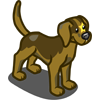 Star Dog-icon