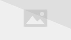 Forest Animal Shinken Blue