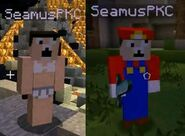 Seamus' Minecraft Skin (Accident Guy and Accident Mario)