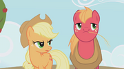 Applejack &quot;are you saying&quot; S01E04