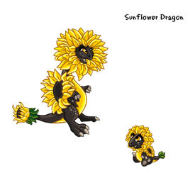 Sunflower Dragon