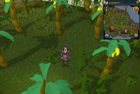 Emote clue Salute banana plantation