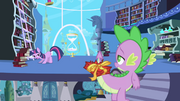 "Twilight asks Spike to look for ""Predictions and Prophecies"" book S1E01"