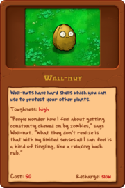 New Wall-nut almanac
