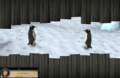Spying penguins.png
