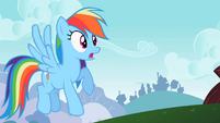Rainbow Dash oh S2E8