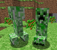 Creepers yay